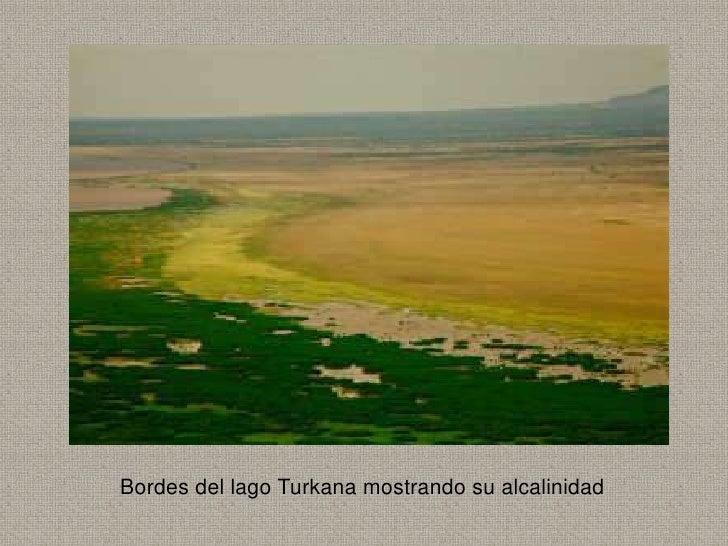 Bordes del lago Turkana mostrando su alcalinidad