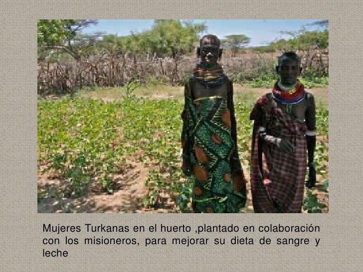 Mujeres Turkanas en el huerto ,plantado en colaboracióncon los misioneros, para mejorar su dieta de sangre yleche