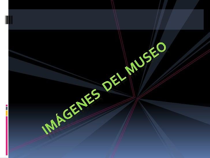 IMÁGENES  DEL MUSEO<br />