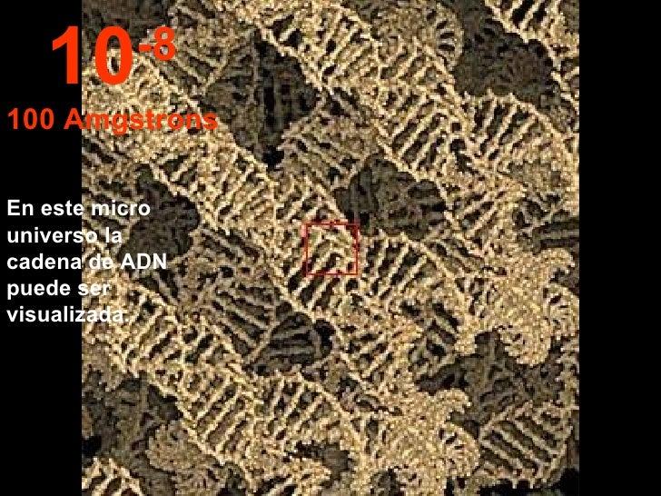 En este micro universo la cadena de ADN puede ser visualizada.  10 -8 100 Amgstrons