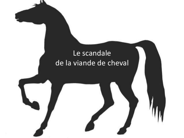 Le scandalede la viande de cheval