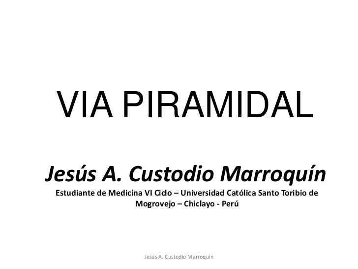 VIA PIRAMIDAL<br />Jesús A. Custodio Marroquín<br />Jesús A. Custodio Marroquín<br />Estudiante de Medicina VI Ciclo – Uni...