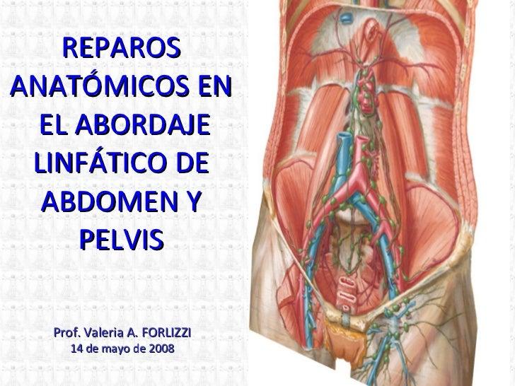 REPAROS ANATÓMICOS EN  EL ABORDAJE LINFÁTICO DE ABDOMEN Y PELVIS Prof. Valeria A. FORLIZZI 14  de  may o de 2008