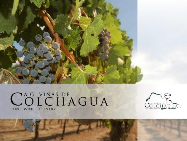 Viñas de Colchagua Colchagua Wineries