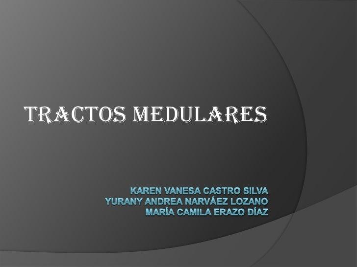 Tractos medulares