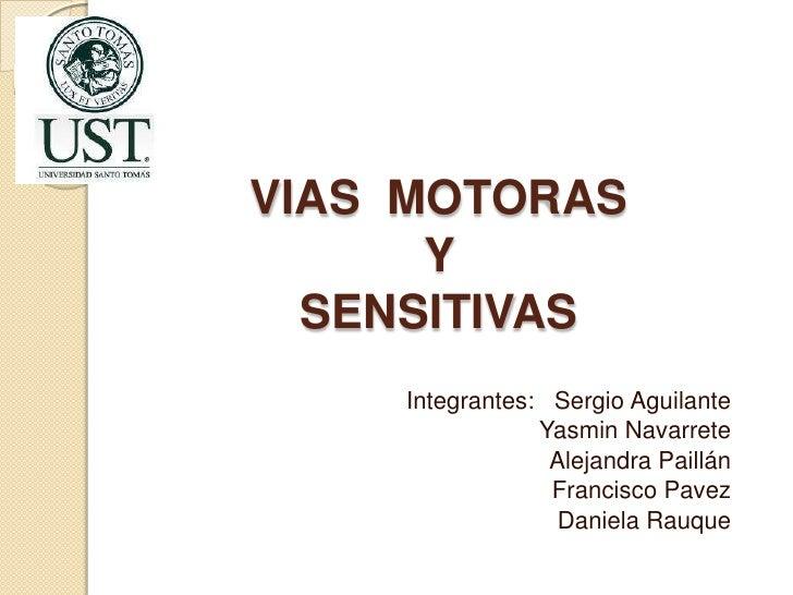 VIAS MOTORAS      Y  SENSITIVAS    Integrantes: Sergio Aguilante                Yasmin Navarrete                 Alejandra...
