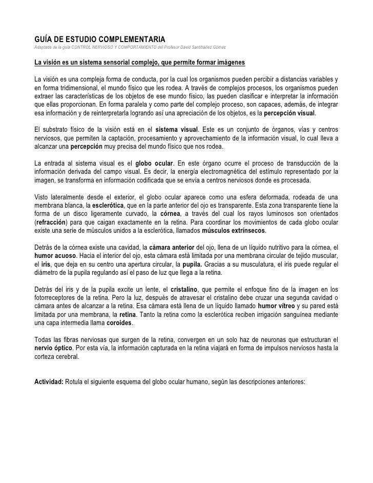 GUÍA DE ESTUDIO COMPLEMENTARIA<br />Adaptada de la guía CONTROL NERVIOSO Y COMPORTAMIENTO del Profesor David Santibáñez Gó...