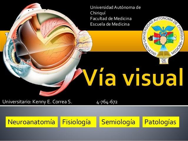 Universitario: Kenny E. Correa S. 4-764-672 Neuroanatomía Fisiología Semiología Patologías Universidad Autónoma de Chiriqu...