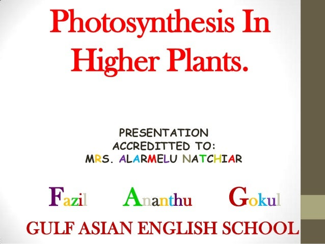 Photosynthesis In   Higher Plants.           PRESENTATION          ACCREDITTED TO:      MRS. ALARMELU NATCHIAR  Fazil    A...