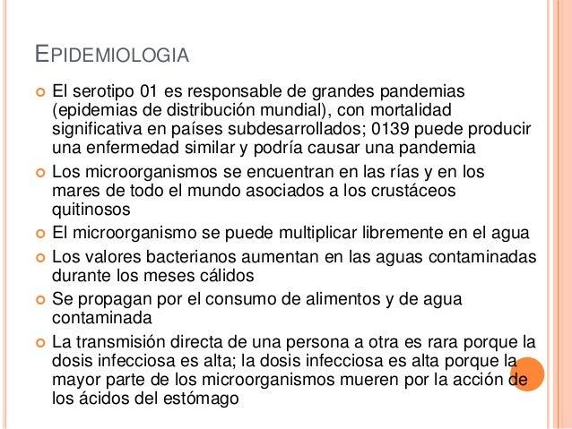 EPIDEMIOLOGIA  El serotipo 01 es responsable de grandes pandemias (epidemias de distribución mundial), con mortalidad sig...