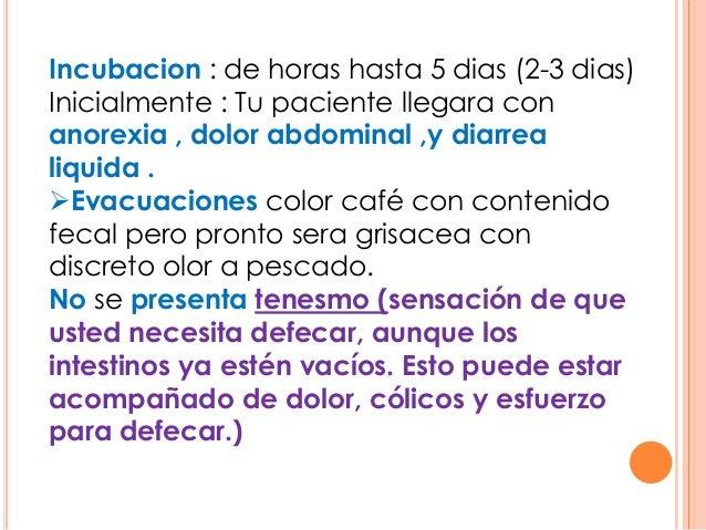 Incubacion : de horas hasta 5 dias (2-3 dias) Inicialmente : Tu paciente llegara con anorexia , dolor abdominal ,y diarrea...