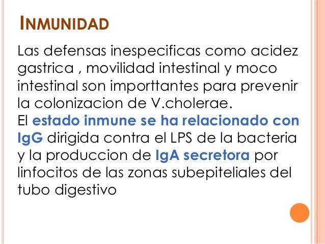 INMUNIDAD Las defensas inespecificas como acidez gastrica , movilidad intestinal y moco intestinal son importtantes para p...