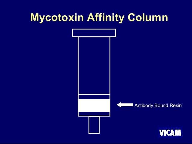 Antibody Bound Resin Mycotoxin Affinity Column