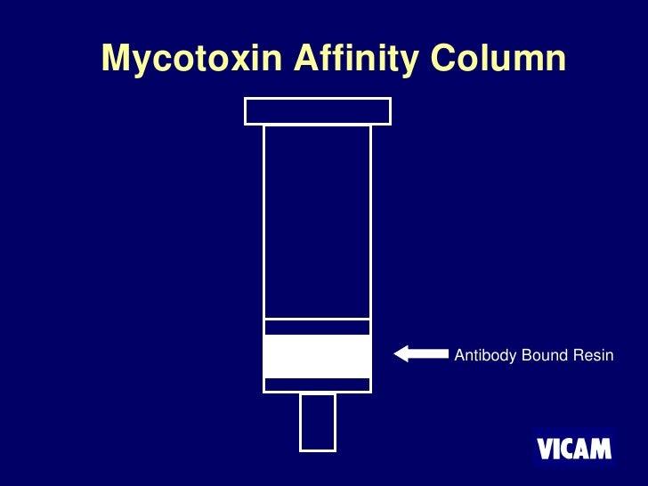 Mycotoxin Affinity Column                       Antibody Bound Resin