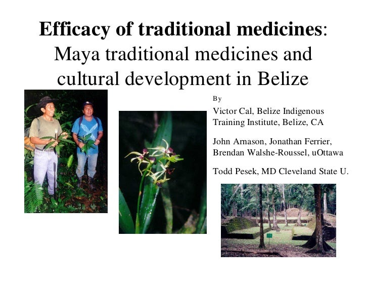 Efficacy of traditional medicines:  Maya traditional medicines and   cultural development in Belize                     By...