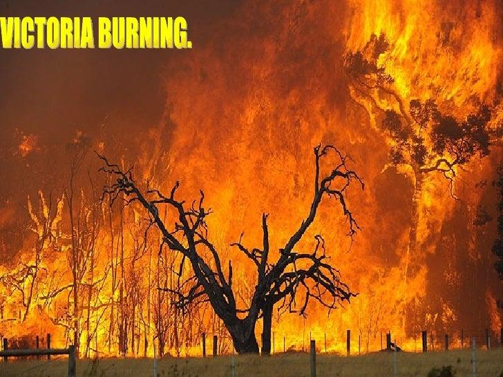 VICTORIA BURNING.