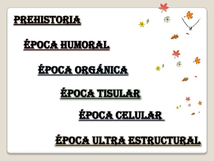 Prehistoria   Época humoral      Época orgánica         Época Tisular            Época celular        Época ultra estructu...