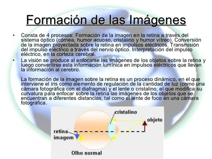 Formación de las Imágenes <ul><li>Consta de 4 procesos: Formación de la imagen en la retina a través del sistema óptico (c...