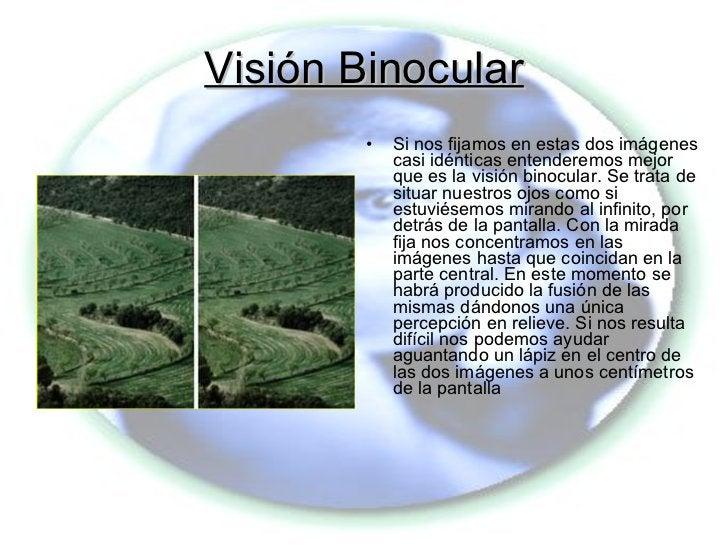 Visión Binocular <ul><li>Si nos fijamos en estas dos imágenes casi idénticas entenderemos mejor que es la visión binocular...