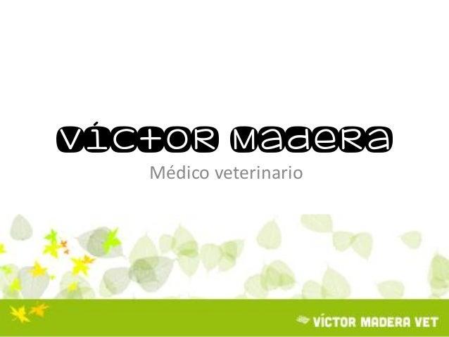 Víctor Madera Médico veterinario