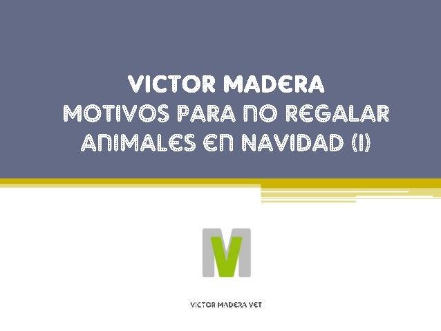 Motivo de Victor Madera n�1: Los animales no deben ser tratados como objetos o premios, sino como seres vivos a los que ha...
