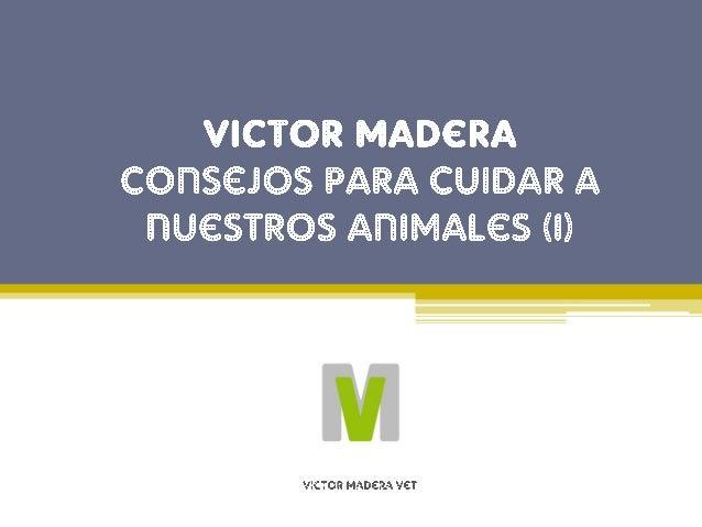 Consejo de Victor Madera n�1: Alimentaci�n Es muy importante alimentar correctamente a nuestras mascotas con aquellos alim...
