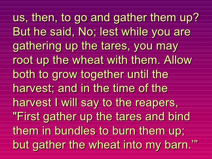 us, then, to go and gather them up? But he said, No; lest while you are gathering up the tares, you may root up the wheat ...