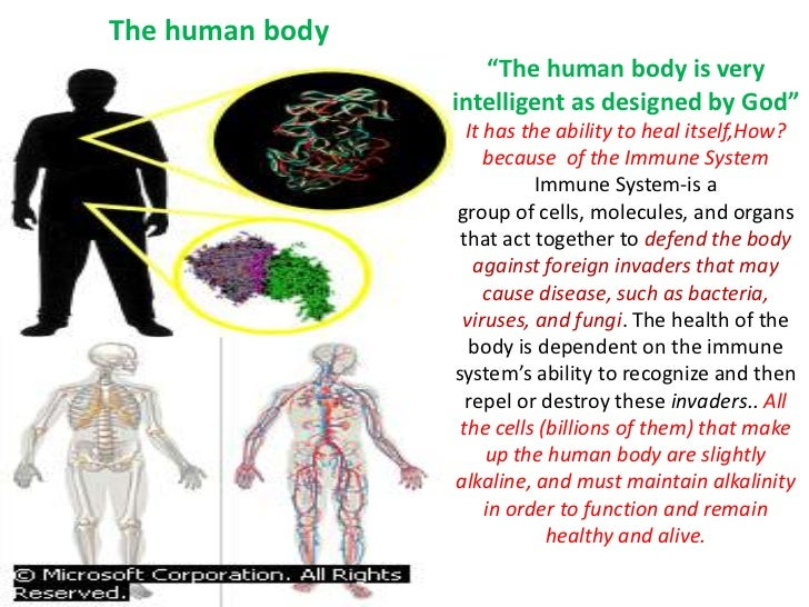 """""""The human body is very intelligent as designed by God""""<br />It has the ability to heal itself,How? because  of the Immune..."""