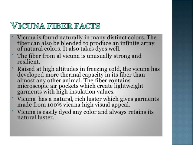 • An vicuna produces enough fleece each year to create six to eight soft, warm sweaters. • Vicuna fleece produces a high y...