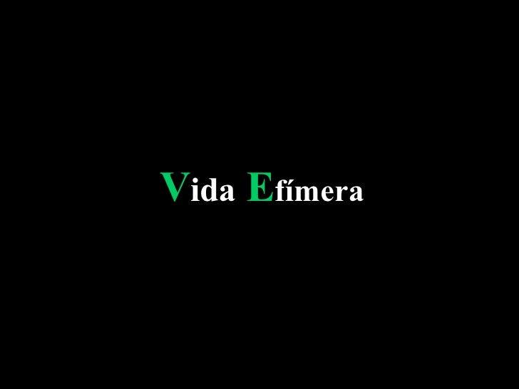 V ida  E fímera