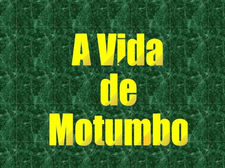 A Vida de  Motumbo