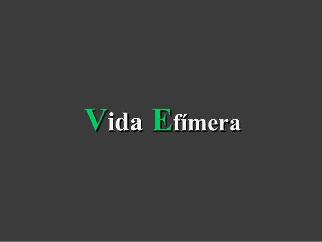 VVidaida EEfímerafímera