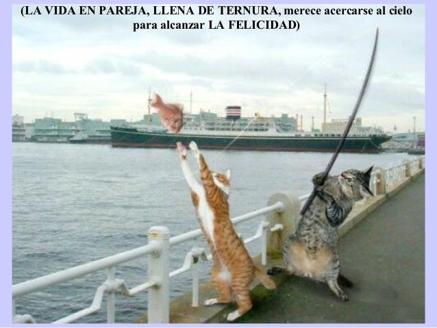 (LA VIDA EN PAREJA, LLENA DE TERNURA, merece acercarse al cielo                para alcanzar LA FELICIDAD)Les meilleures p...