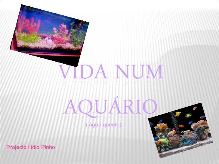 Projecto Ilídio Pinho ( água quente)