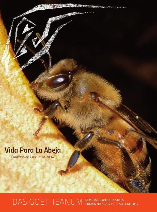Vida para la abeja