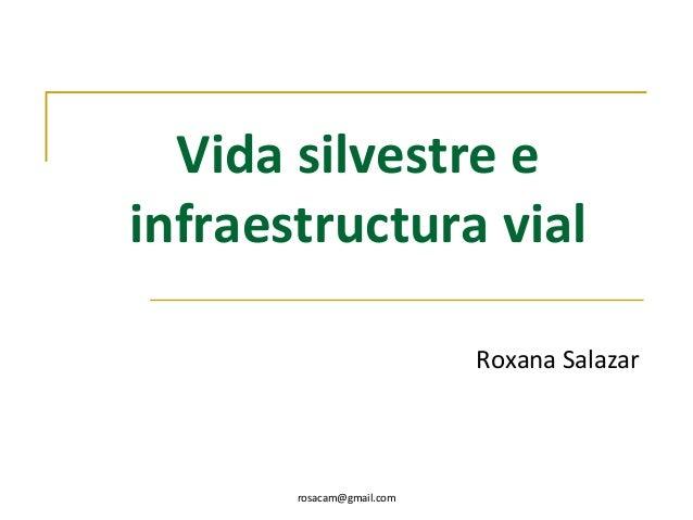 rosacam@gmail.comVida silvestre einfraestructura vialRoxana Salazar