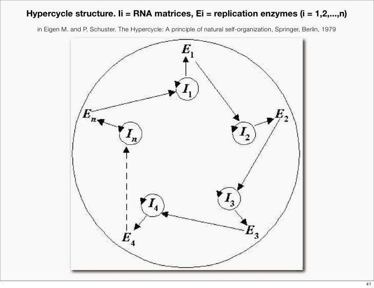 principles of biological autonomy varela pdf