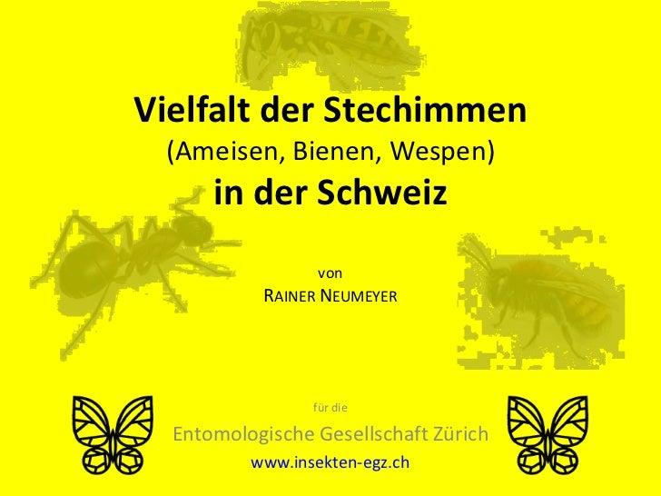 Vielfalt der Stechimmen (Ameisen, Bienen, Wespen)      in der Schweiz                  von           RAINER NEUMEYER      ...