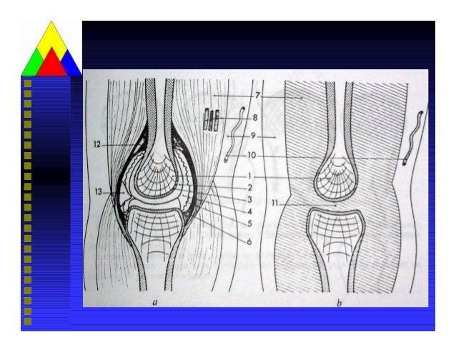 Viemkhop (1) Slide 3