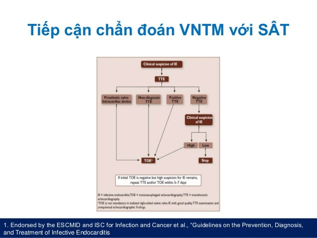 """Tiếp cận chẩn đoán VNTM với SÂT 1. Endorsed by the ESCMID and ISC for Infection and Cancer et al., """"Guidelines on the Prev..."""