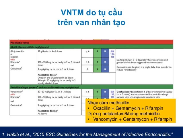 "VNTM do tụ cầu trên van nhân tạo 1. Habib et al., ""2015 ESC Guidelines for the Management of Infective Endocarditis."" Nhạy..."