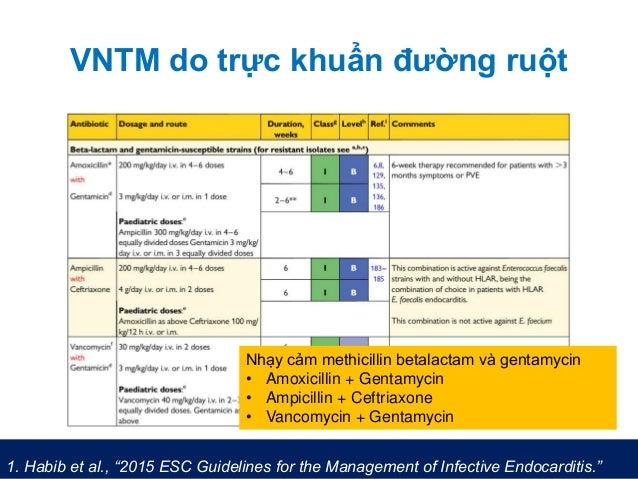 """VNTM do trực khuẩn đường ruột 1. Habib et al., """"2015 ESC Guidelines for the Management of Infective Endocarditis."""" Nhạy cả..."""