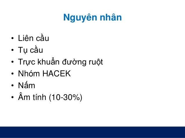 Nguyên nhân • Liên cầu • Tụ cầu • Trực khuẩn đường ruột • Nhóm HACEK • Nấm • Âm tính (10-30%)