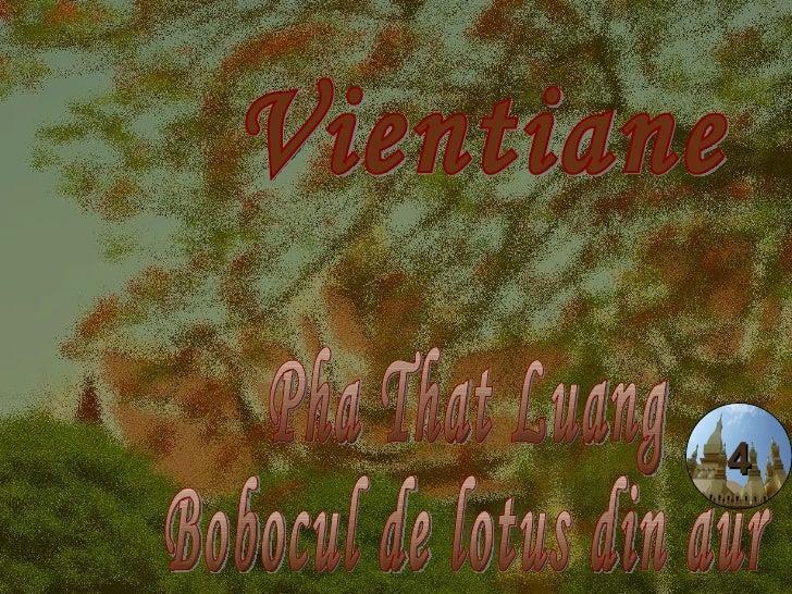 Vientiane Pha That Luang Bobocul de lotus din aur 4