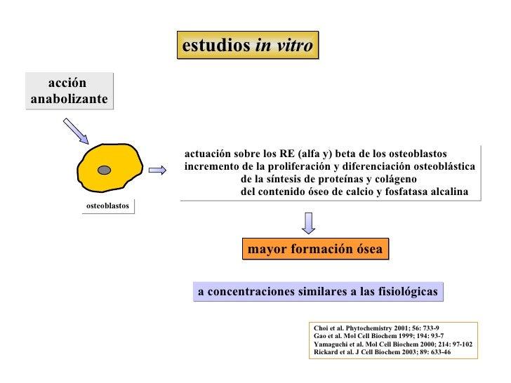 Estanislao BeltráN MontalbáN - OTRAS INDICACIONES - Salud Osea Slide 2