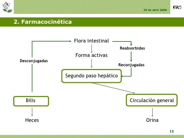 2. Farmacocinética Forma activas Segundo paso hepático Circulación general Bilis Orina Heces Flora intestinal Desconjugada...