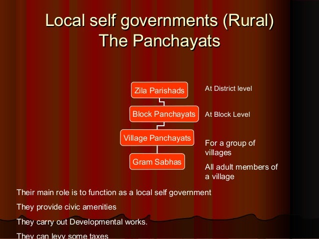 local self government