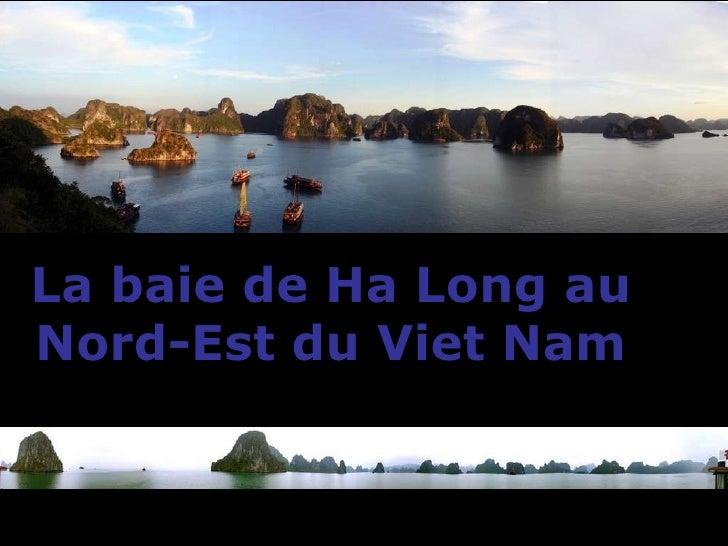 La baie de Ha Long au  Nord-Est du Viet Nam