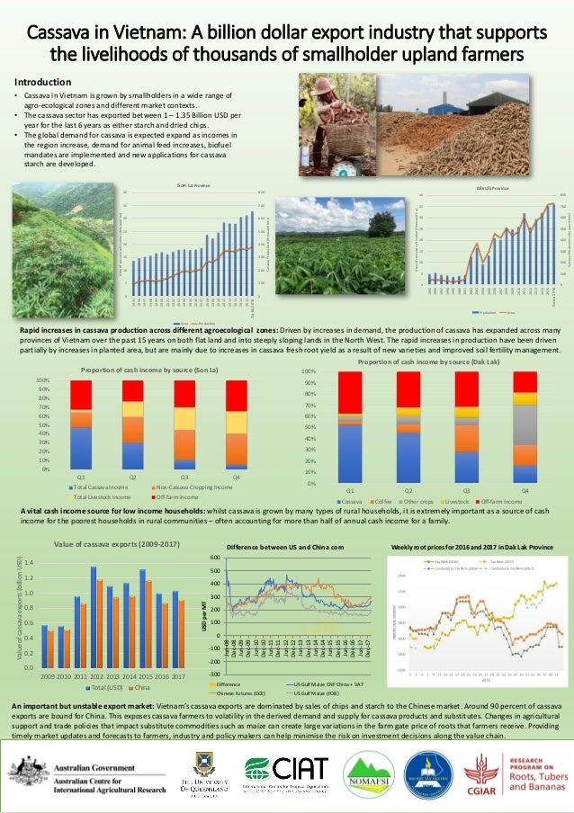 Cassava in Vietnam: A billion dollar export industry that supports the livelihoods of thousands of smallholder upland farm...