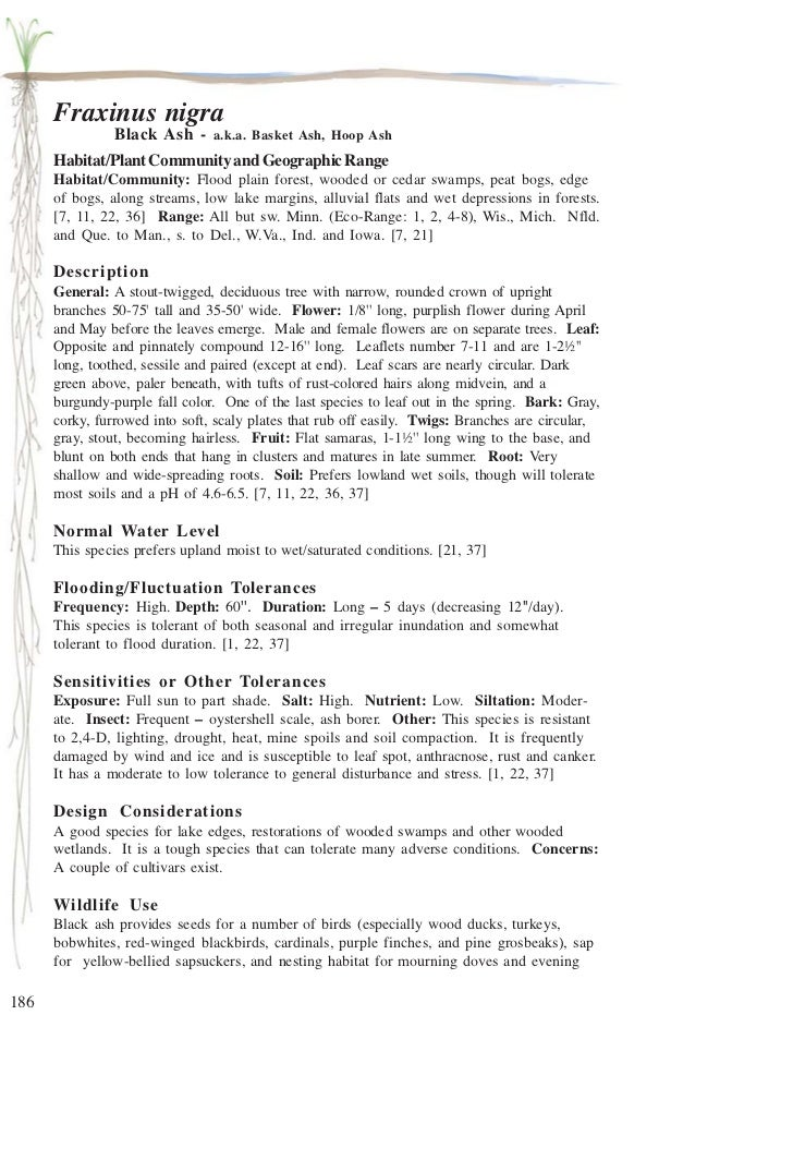 Fraxinus nigra                Black Ash - a.k.a. Basket Ash, Hoop Ash      Habitat/Plant Community and Geographic Range   ...